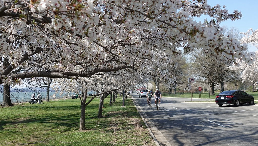 East Potomac Park