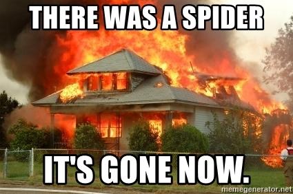 burn down house spider