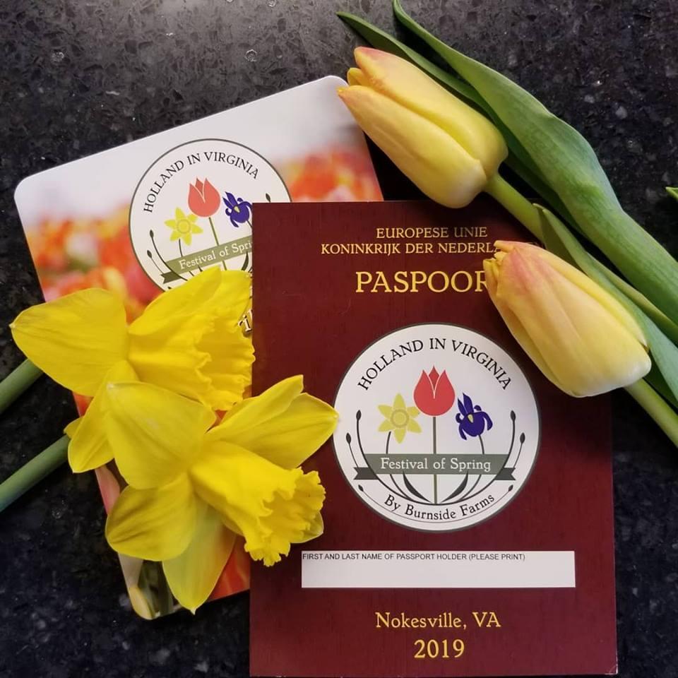 spring festival passport