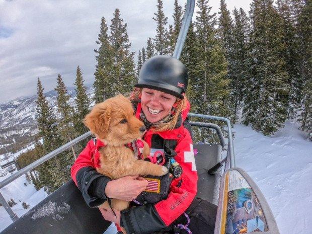 cowgirl, vail's new ski patrol dog
