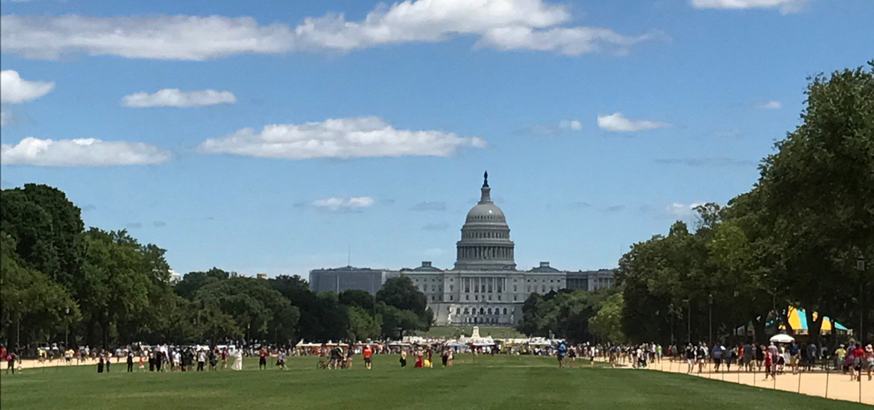 capitol lawn and national mall