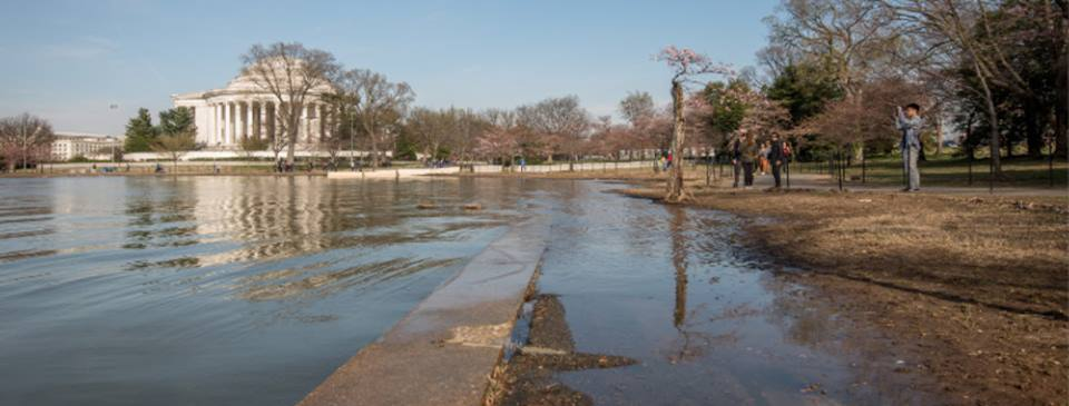 Tidal Basin, flooding