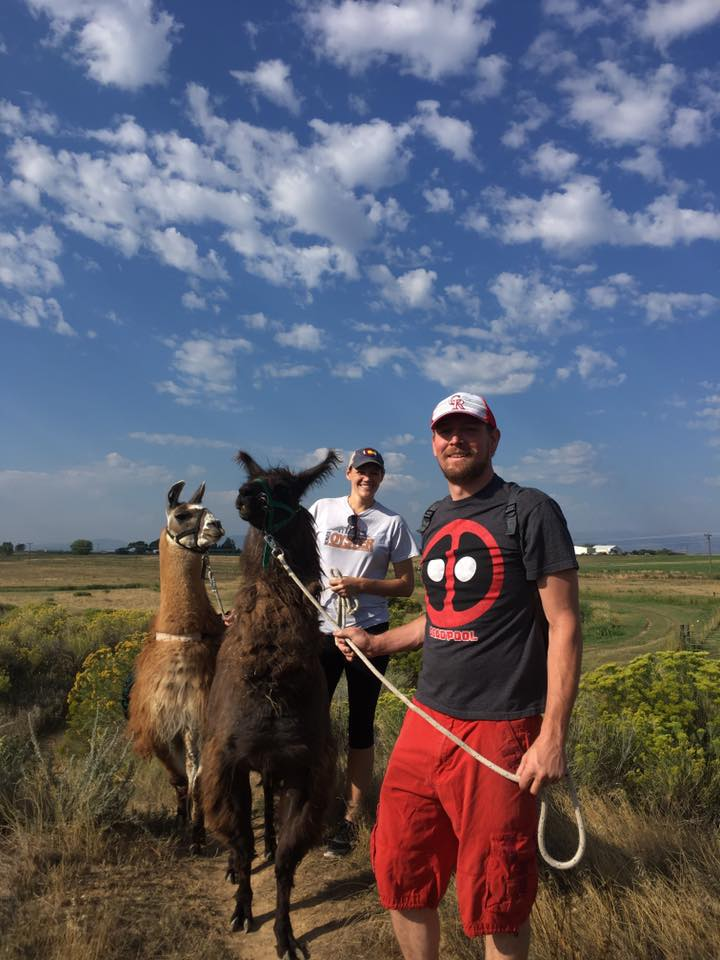 hiking with llamas