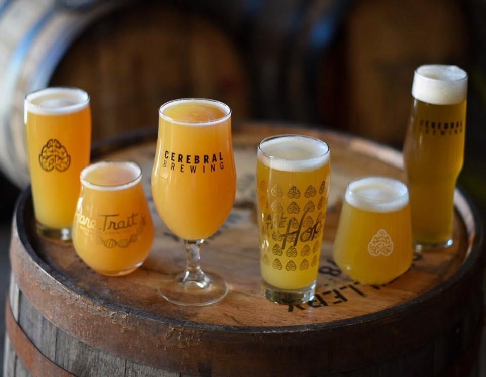 Cerebral Brewery