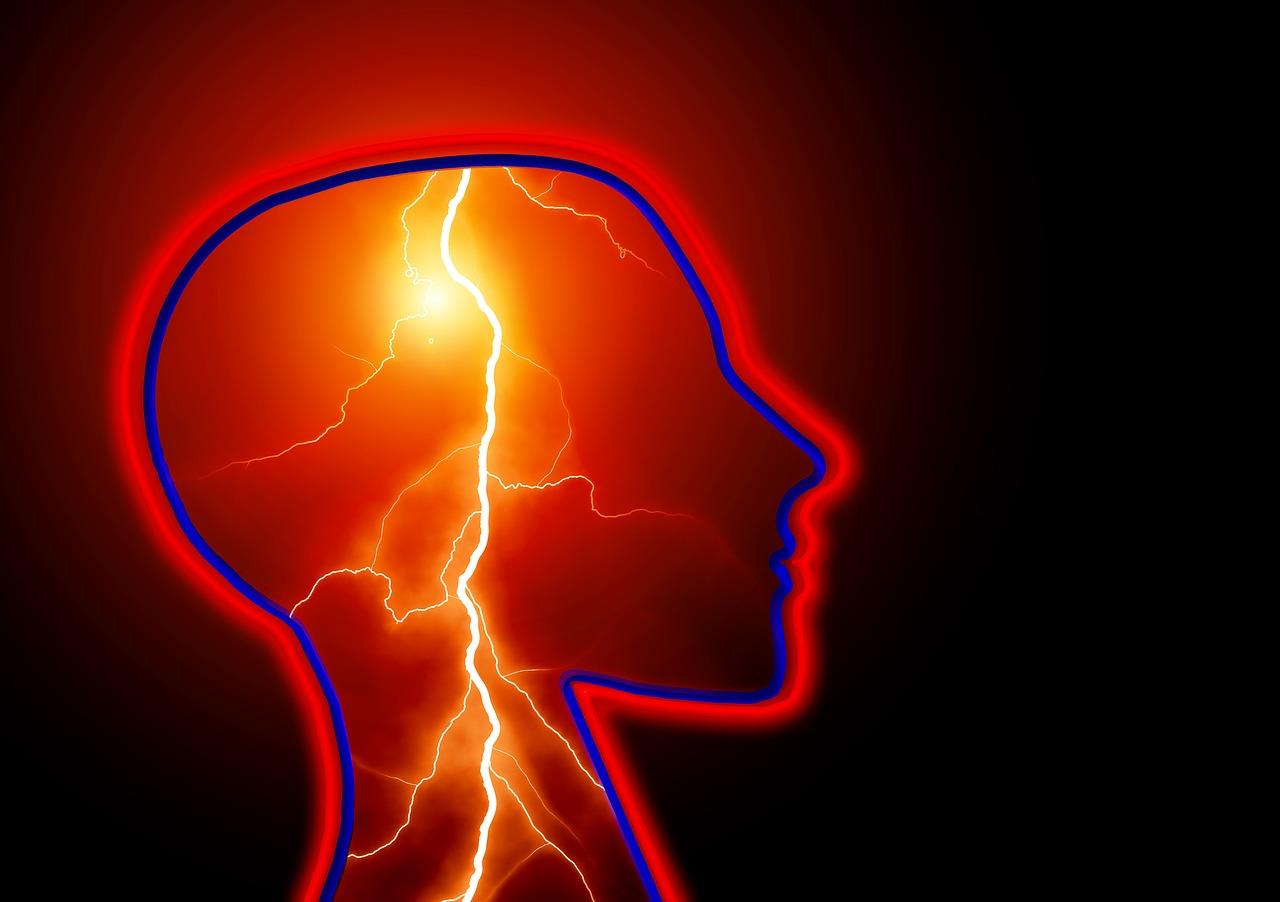epilepsy, brain
