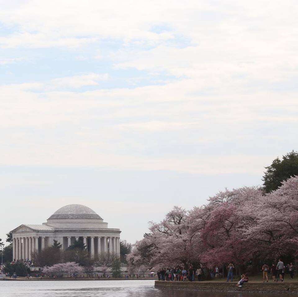 Tidal Basin, Jefferson Memorial