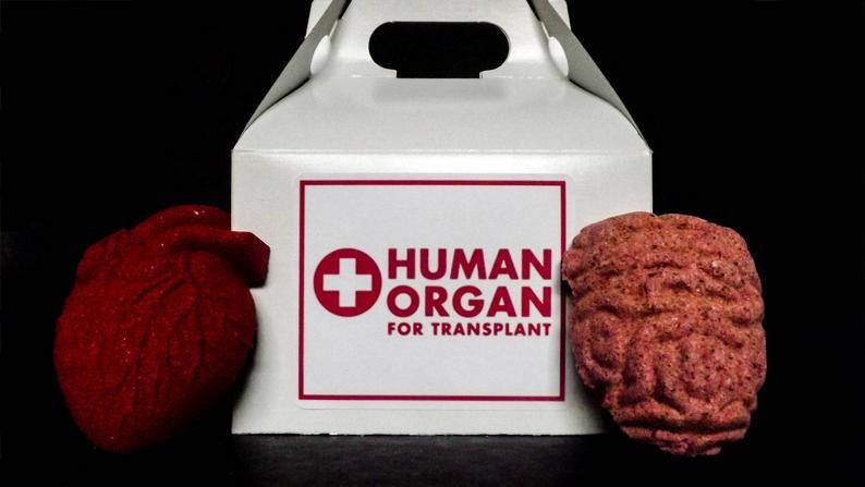 Human organs bath bomb