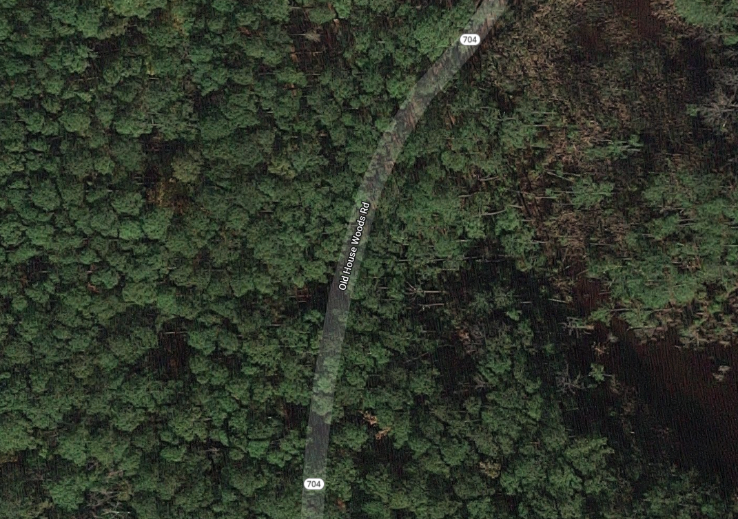 aerial view of woods