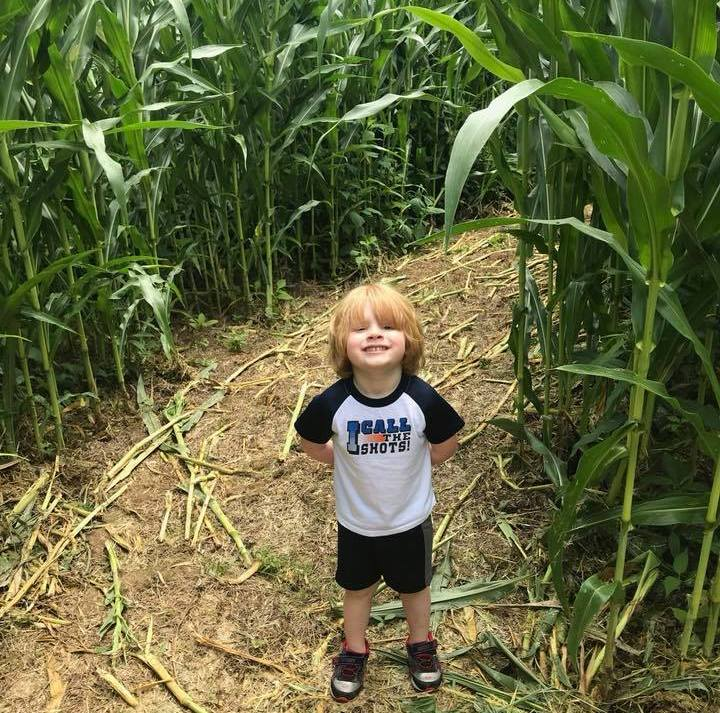 Little boy in corn maze in Virginia