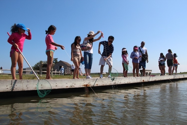 Kids crabbing at Old Ferry Landing, courtesy NPS.gov