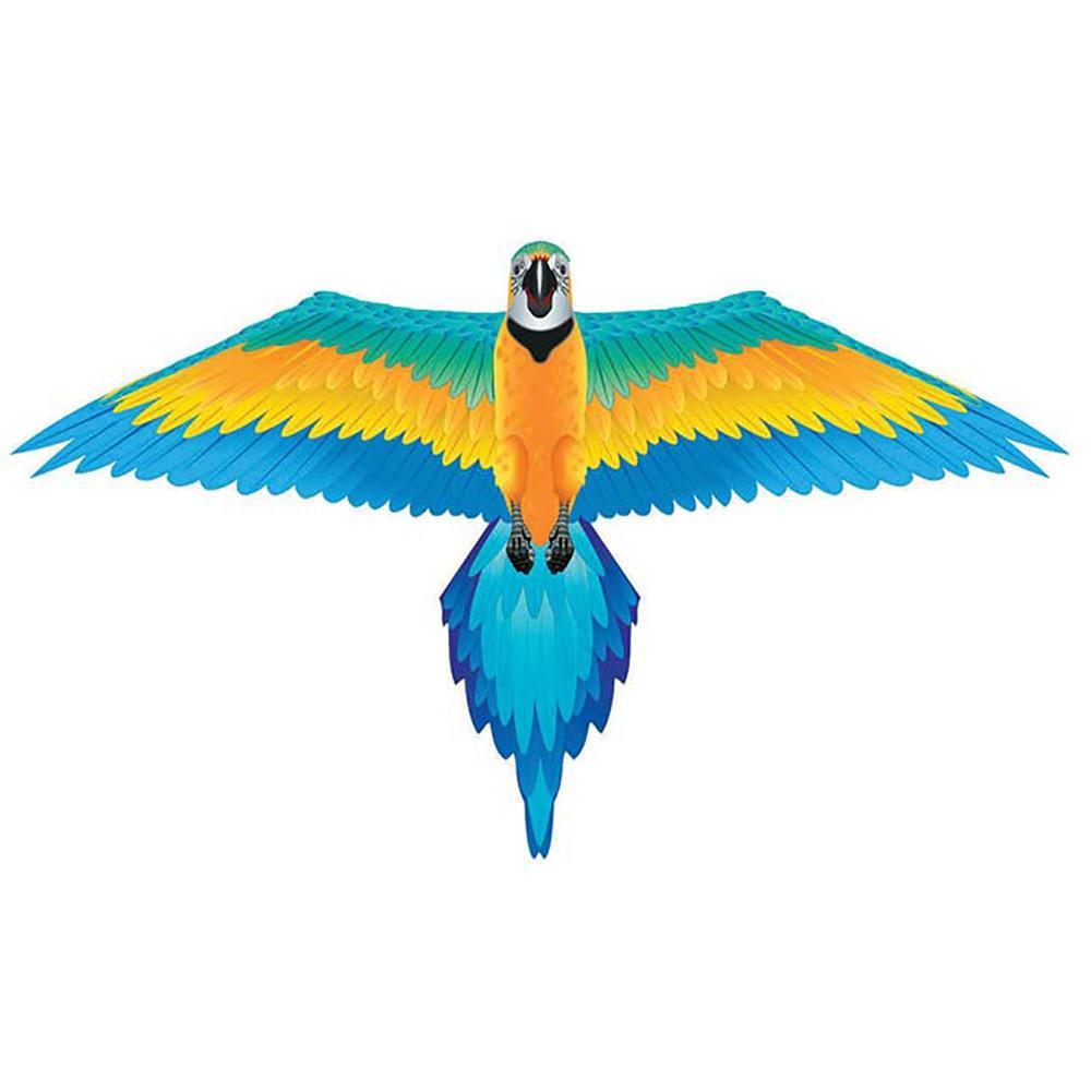 macaw kite