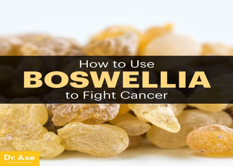Boswellia is an herb from India, also known as Indian Frankincense.