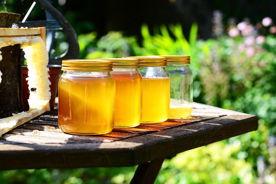 honey, medical treatment, cold remedy