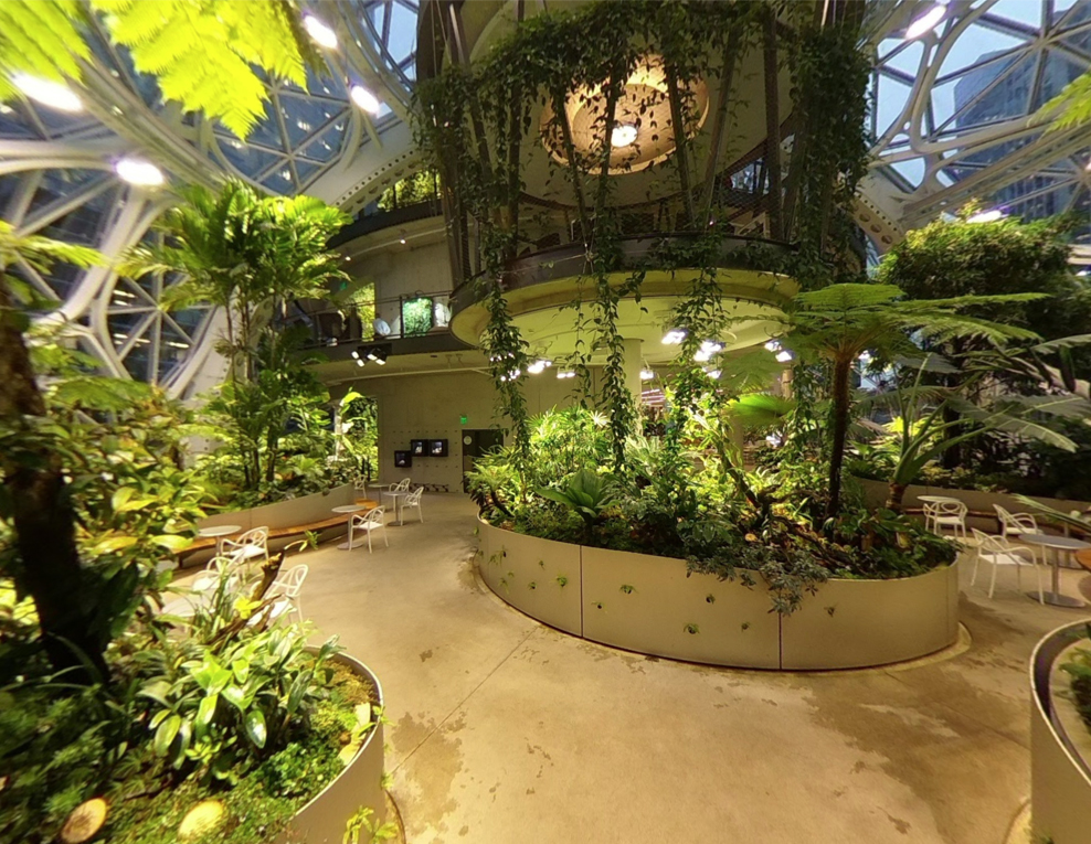 View of Garden at Amazon's Sphere Space