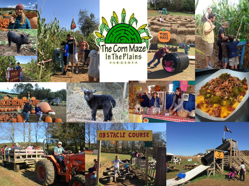 Corn Maze in the Plains Virginia Fall Festivals