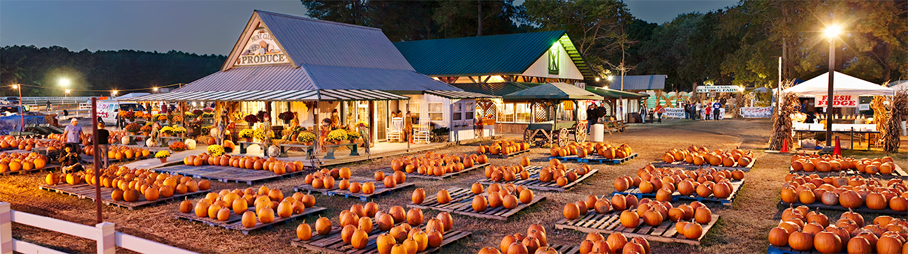 Hunt Club Farm Pumpkins
