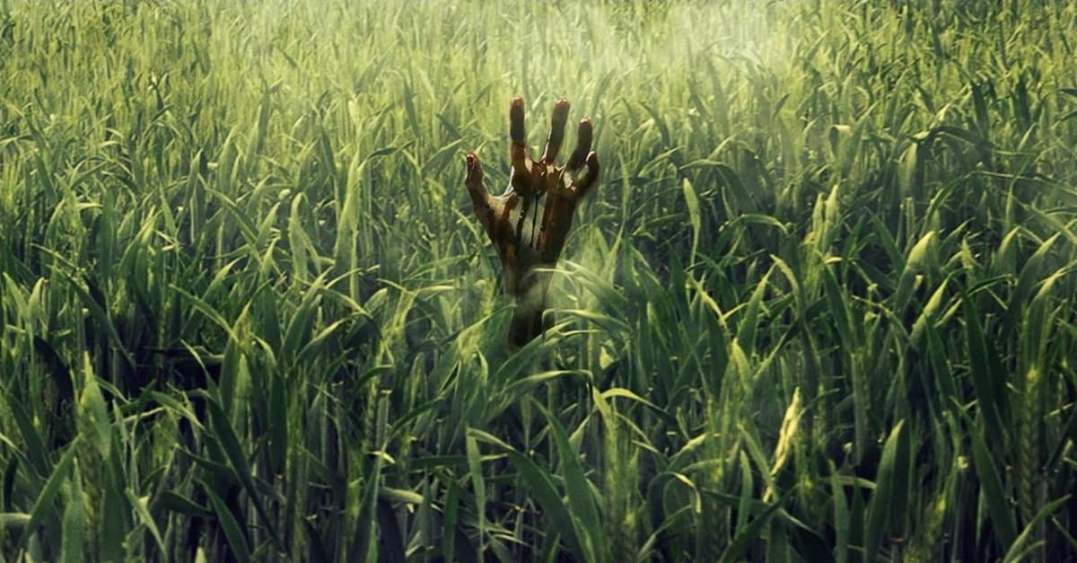 Hand in Tall Grass
