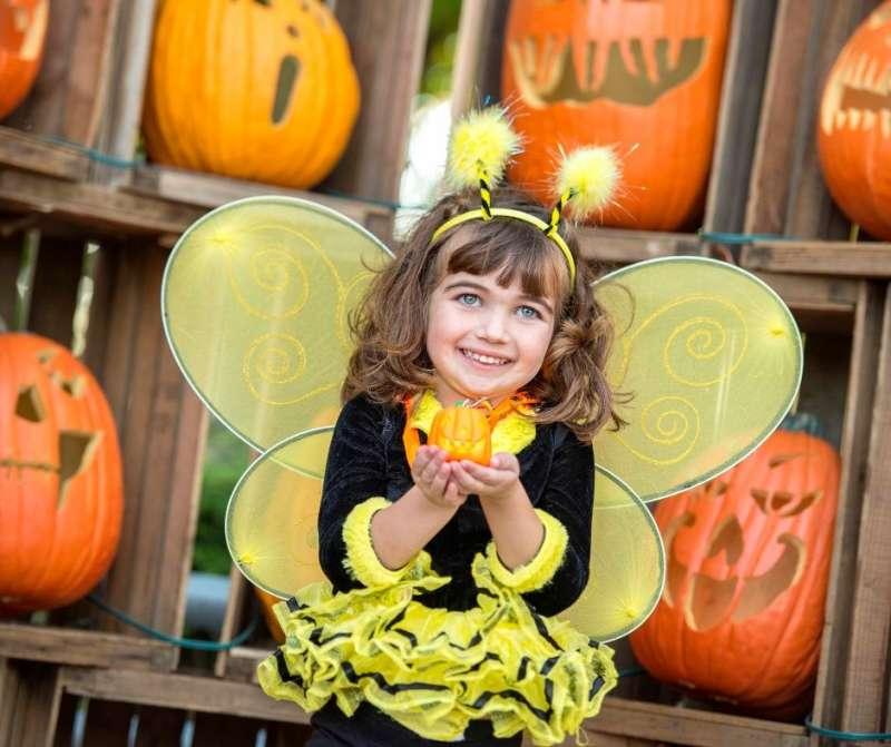 Kid dressed as bumble bee