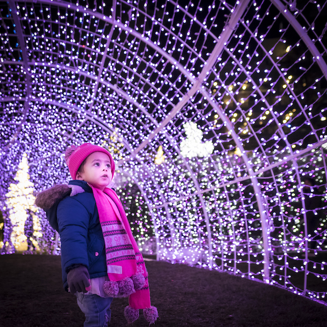 Enchant Christmas Light Tunnel